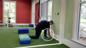Ankle Mobility #1